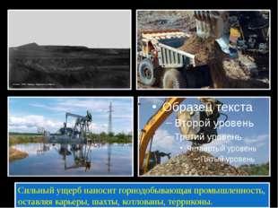 Сильный ущерб наносит горнодобывающая промышленность, оставляя карьеры, шахт