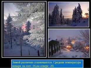 Зимой различия сглаживаются. Средняя температура января на юге -16,на севере
