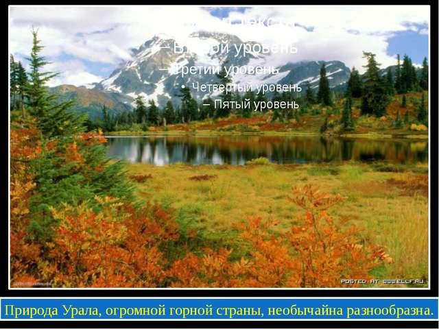 Природа Урала, огромной горной страны, необычайна разнообразна.
