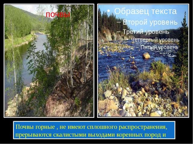 Почвы горные , не имеют сплошного распространения, прерываются скалистыми вы...