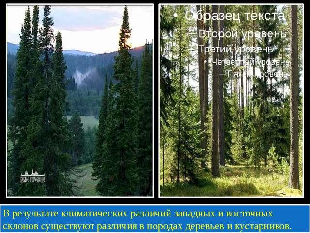 В результате климатических различий западных и восточных склонов существуют...
