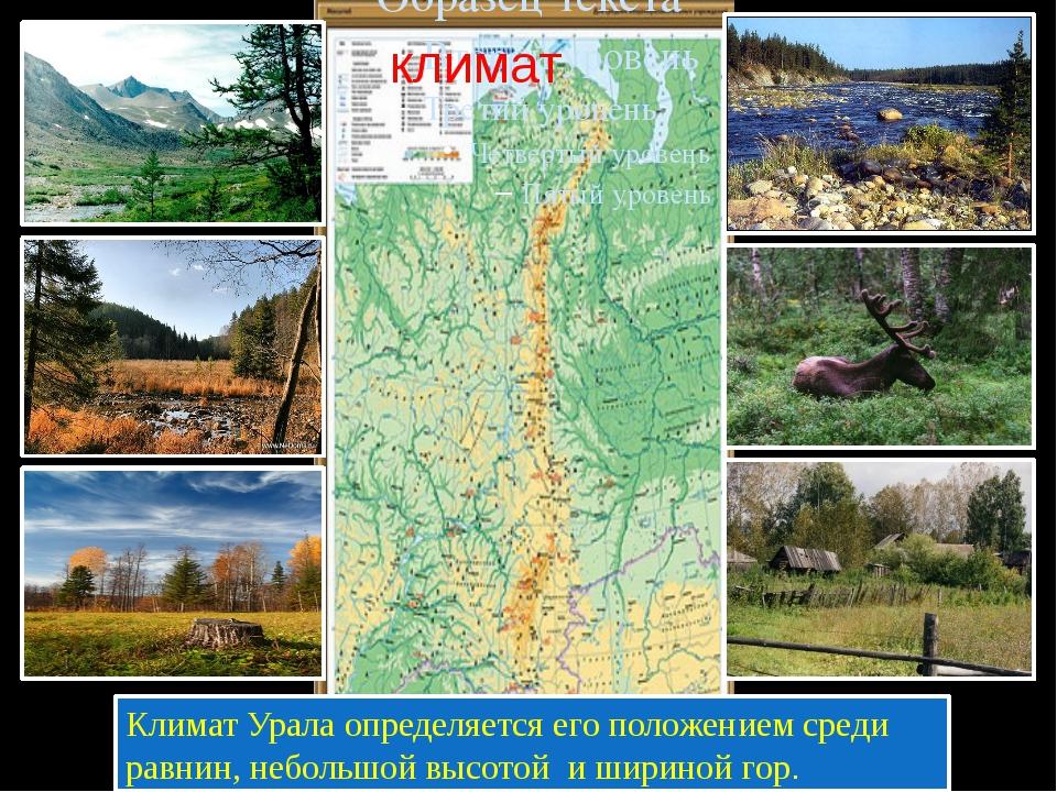 Климат Урала определяется его положением среди равнин, небольшой высотой и ш...
