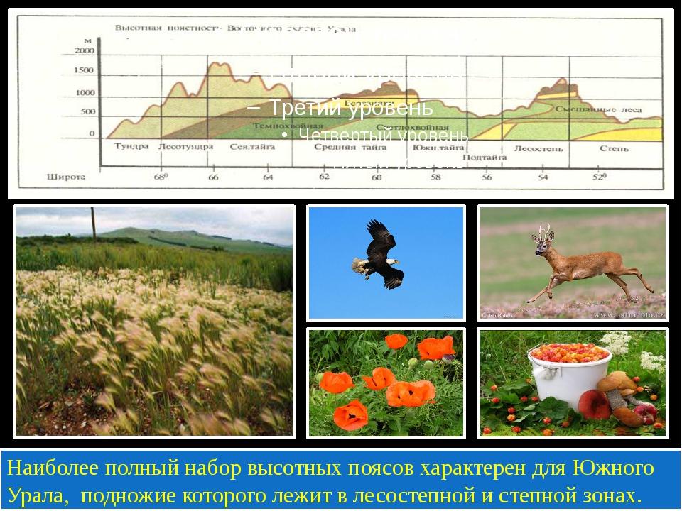 Наиболее полный набор высотных поясов характерен для Южного Урала, подножие...