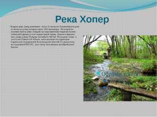 Река Хопер Возраст реки Хопёр почтенный – более 10 тысяч лет. Протяжённость
