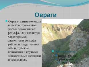 Овраги Овраги- самые молодые и распространенные формы эрозионного рельефа. Он