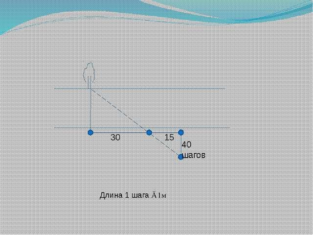 Длина 1 шага ≈ 1м
