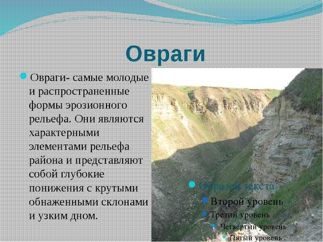 Овраги Овраги- самые молодые и распространенные формы эрозионного рельефа. Он...
