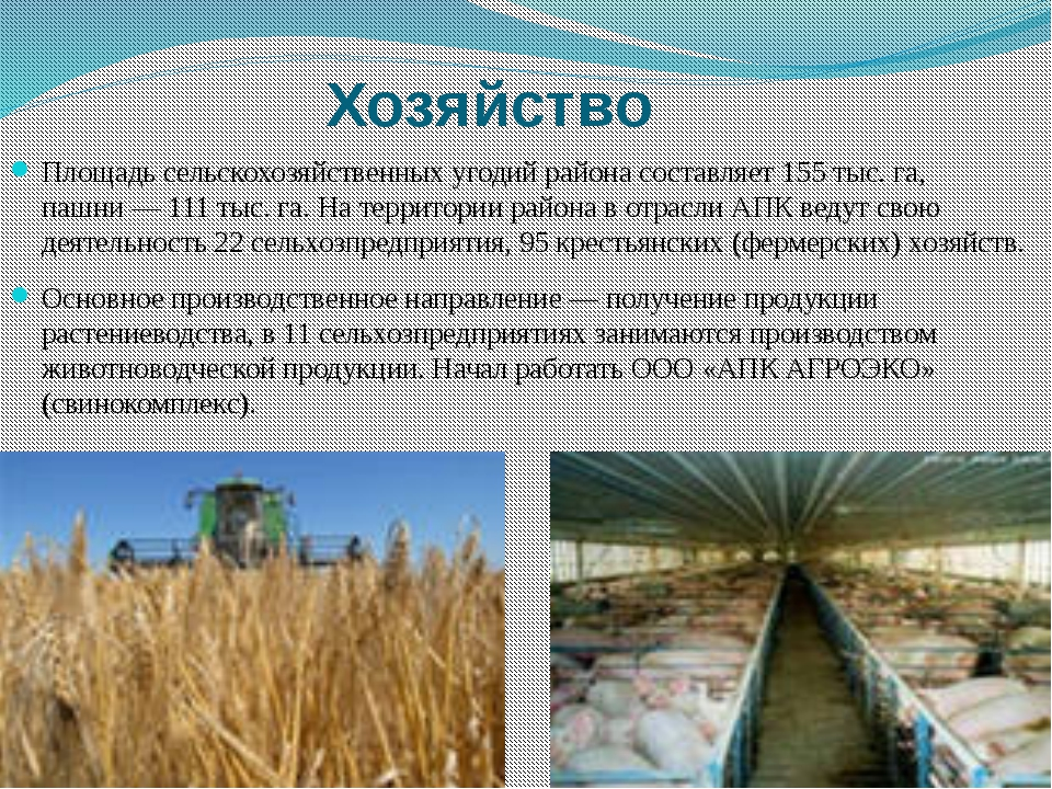 Площадь сельскохозяйственных угодий района составляет 155тыс.га, пашни— 11...