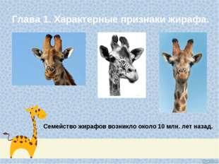 Глава 1. Характерные признаки жирафа. Семейство жирафов возникло около 10 млн
