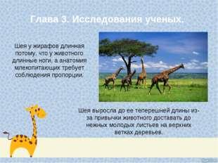 Глава 3. Исследования ученых. Шея у жирафов длинная потому, что у животного д