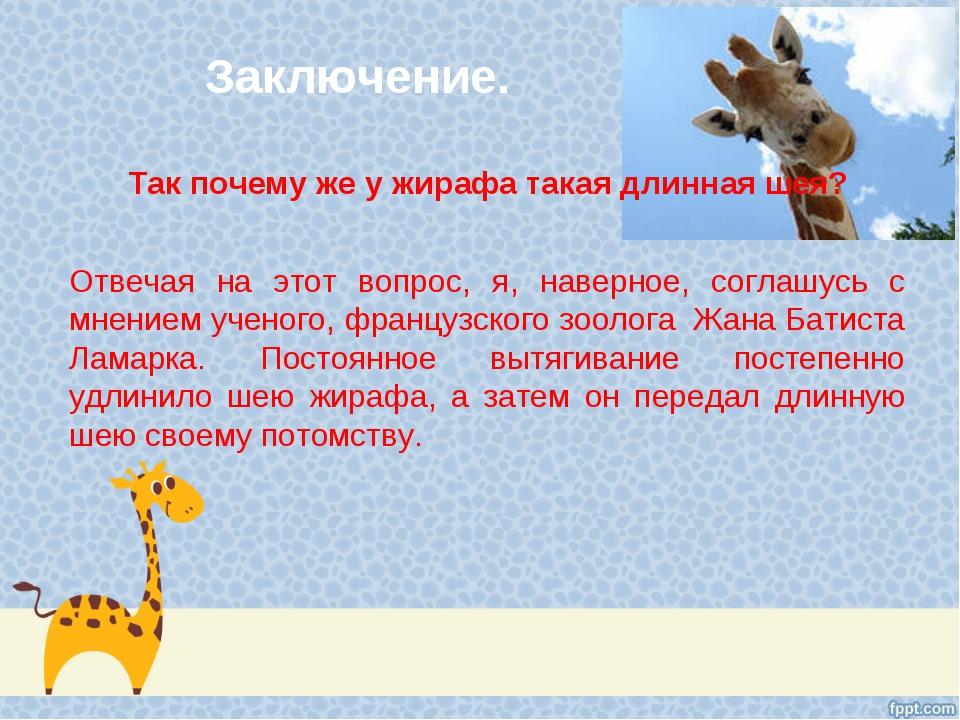 Заключение. Так почему же у жирафа такая длинная шея? Отвечая на этот вопрос,...