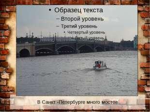 В Санкт -Петербурге много мостов