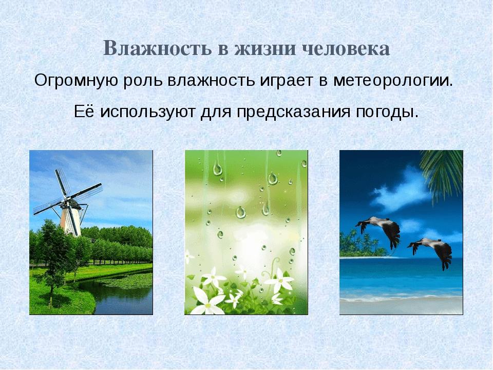 Влажность в жизни человека Огромную роль влажность играет в метеорологии. Её...