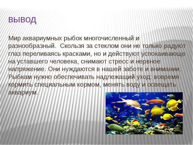 вывод Мир аквариумных рыбок многочисленный и разнообразный. Скользя за стекло...