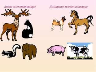 Дикие млекопитающие Домашние млекопитающие