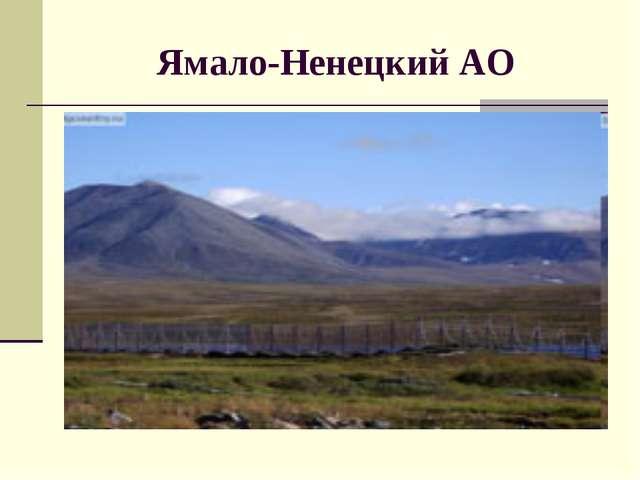 Ямало-Ненецкий АО