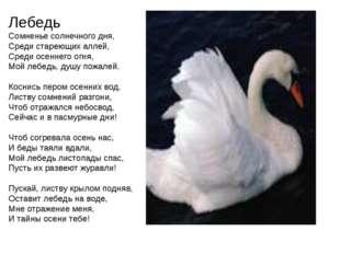 Лебедь Сомненье солнечного дня, Среди стареющих аллей, Среди осеннего огня, М