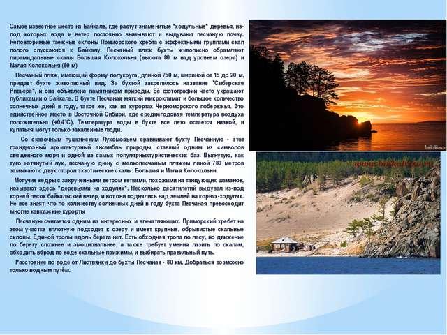 """Самое известное место на Байкале, где растут знаменитые """"ходульные"""" деревья,..."""