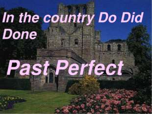 In the country Do Did Done Past Perfect