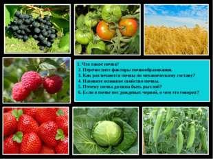 1. Что такое почва? 2. Перечислите факторы почвообразования. 3. Как различают