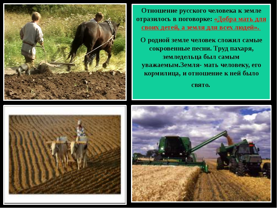 Отношение русского человека к земле отразилось в поговорке: «Добра мать для...