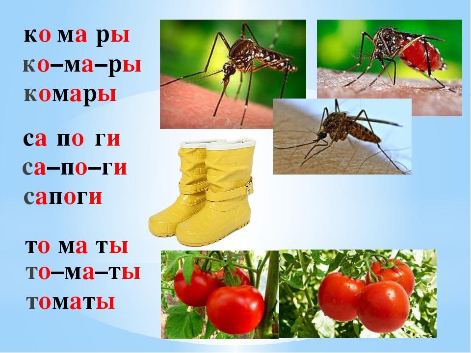 ко ма ры ко–ма–ры комары са по ги са–по–ги сапоги то ма ты то–ма–ты томаты