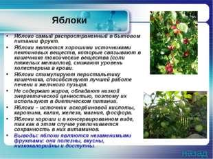 Яблоки Яблоко самый распространенный в бытовом питании фрукт. Яблоки являются