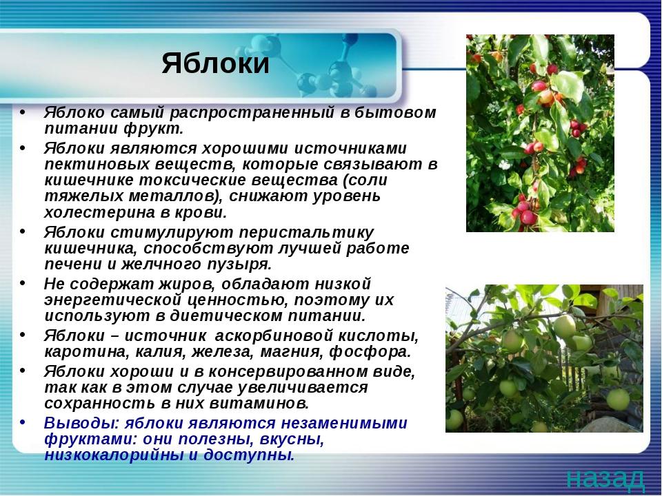 Яблоки Яблоко самый распространенный в бытовом питании фрукт. Яблоки являются...