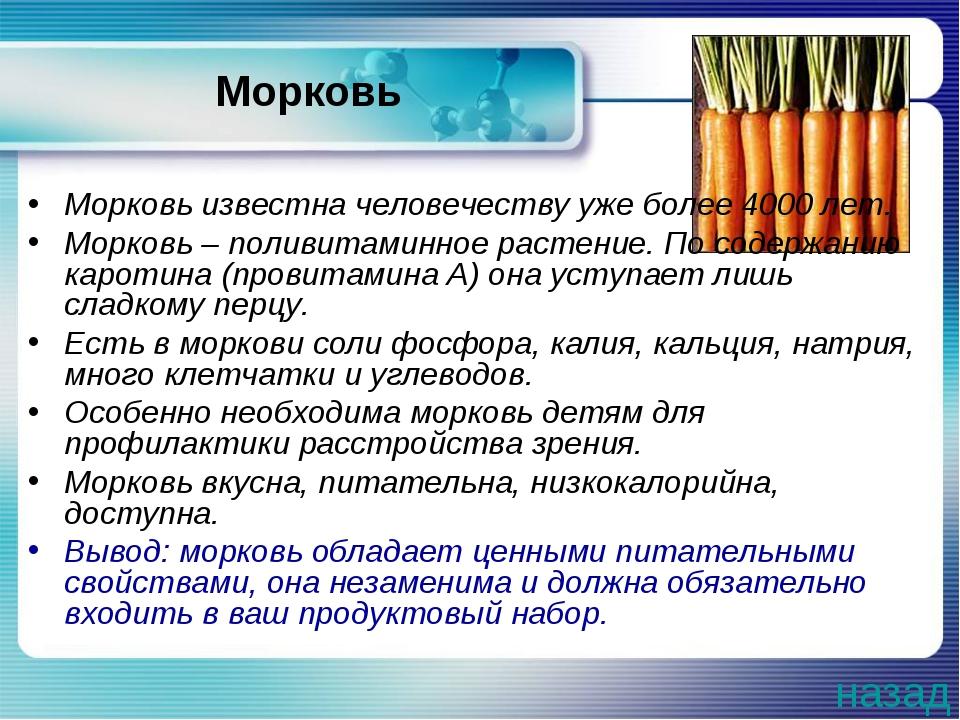 Морковь Морковь известна человечеству уже более 4000 лет. Морковь – поливитам...