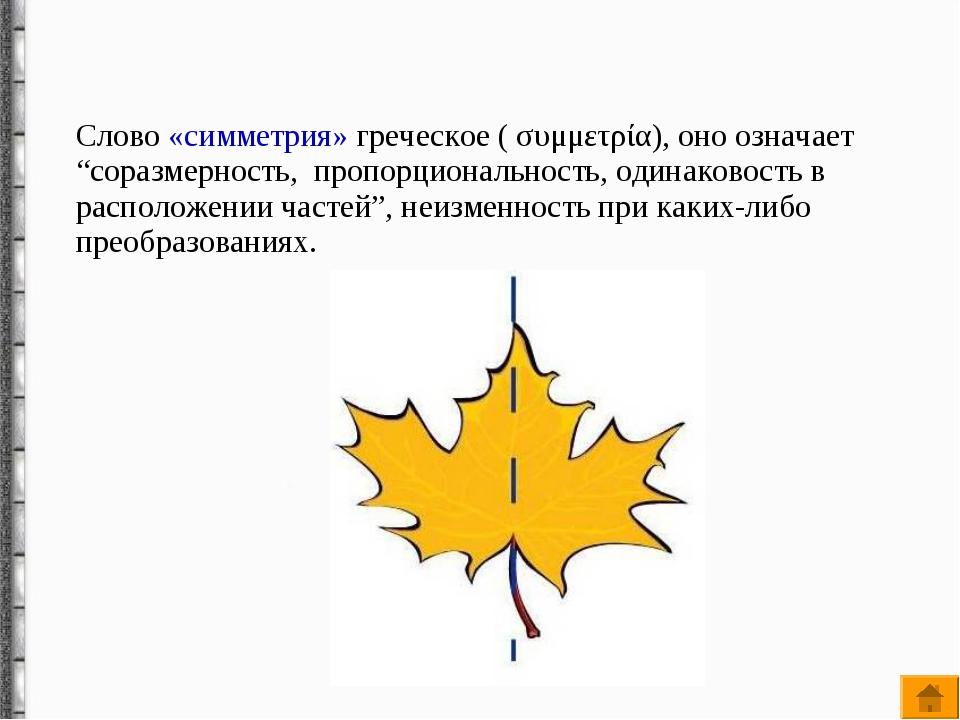 """Слово «симметрия» греческое ( συμμετρία), оно означает """"соразмерность, пропо..."""