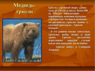 Медведь- гризли Гризли – крупный зверь: длина тела до 250 см, а масса более 4