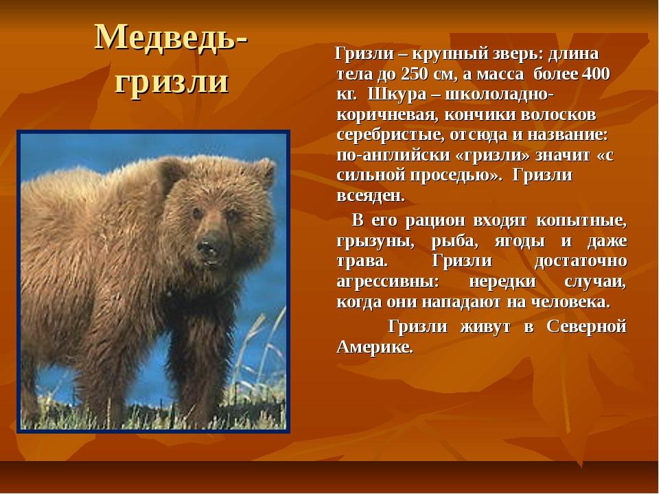 Медведь- гризли Гризли – крупный зверь: длина тела до 250 см, а масса более 4...