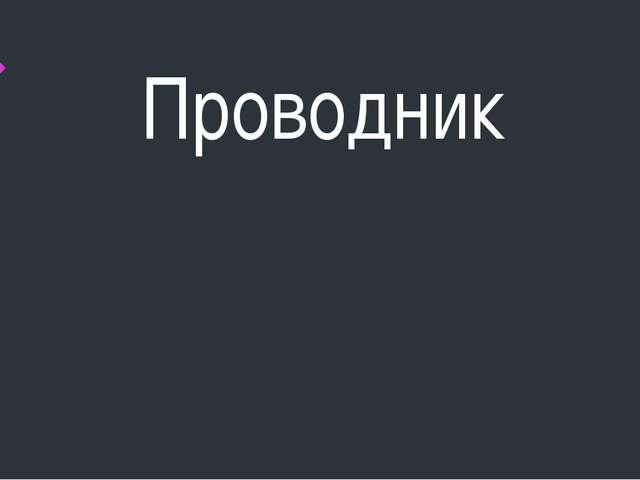 Проводник