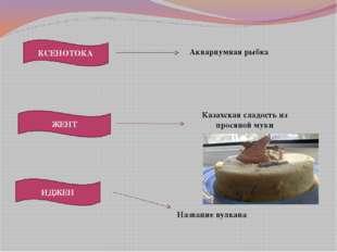 ЖЕНТ КСЕНОТОКА ИДЖЕН Название вулкана Казахская сладость из просяной муки Акв
