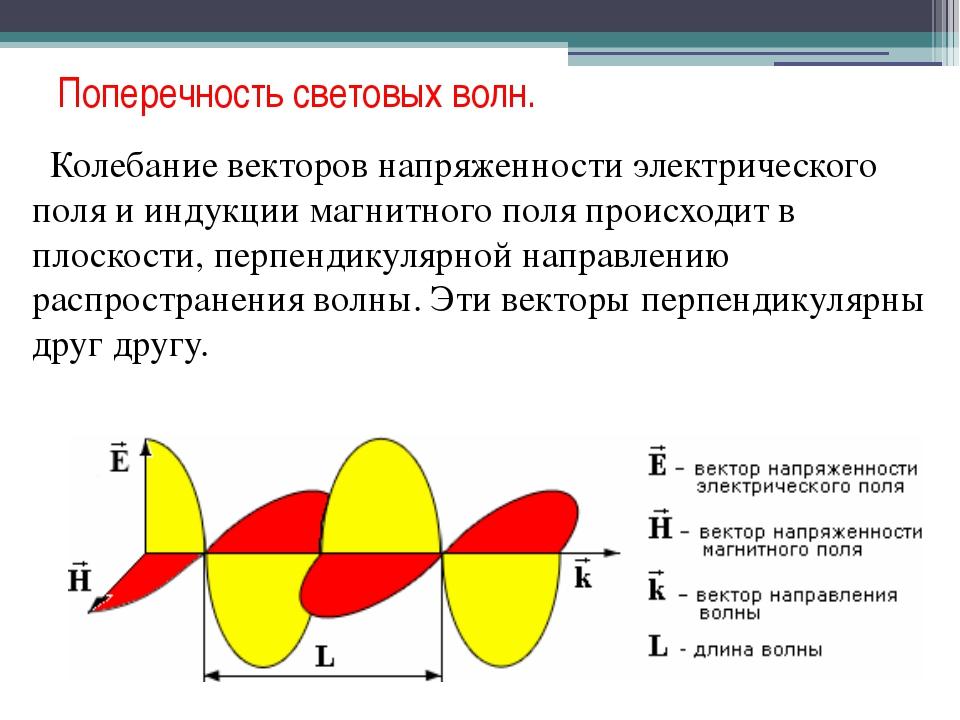 Поперечность световых волн. Колебание векторов напряженности электрического п...