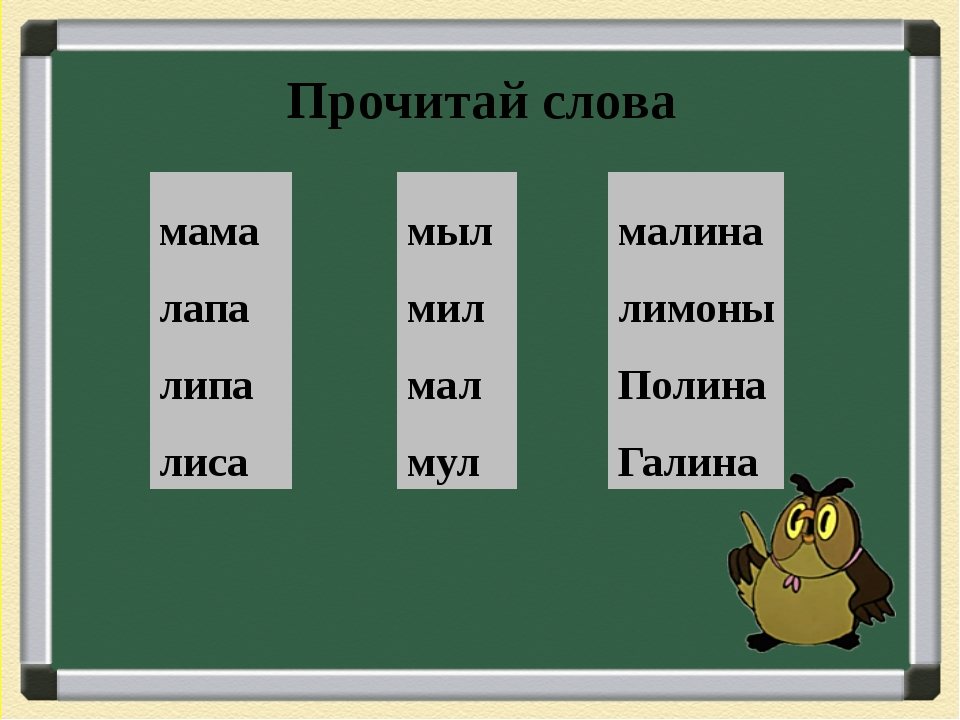 Прочитай слова мама лапа липа лиса мыл мил мал мул малина лимоны Полина Галина
