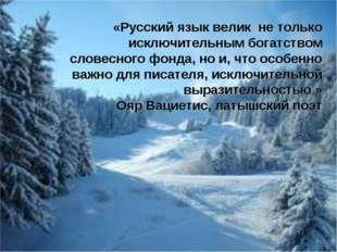 «Русский язык велик не только исключительным богатством словесного фонда, но