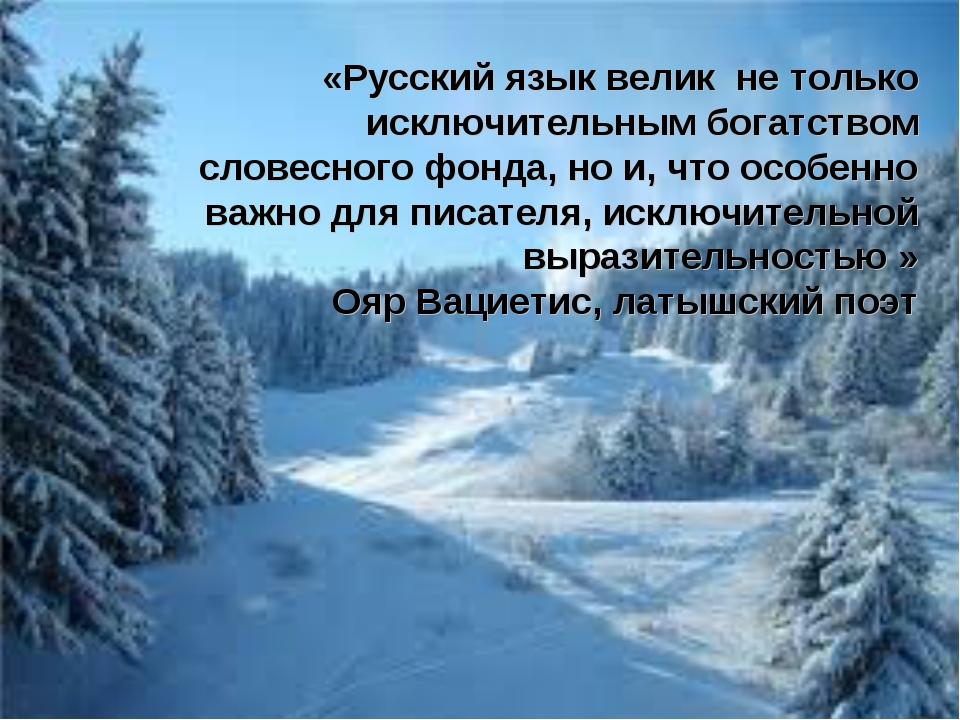 «Русский язык велик не только исключительным богатством словесного фонда, но...
