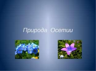 Природа Осетии