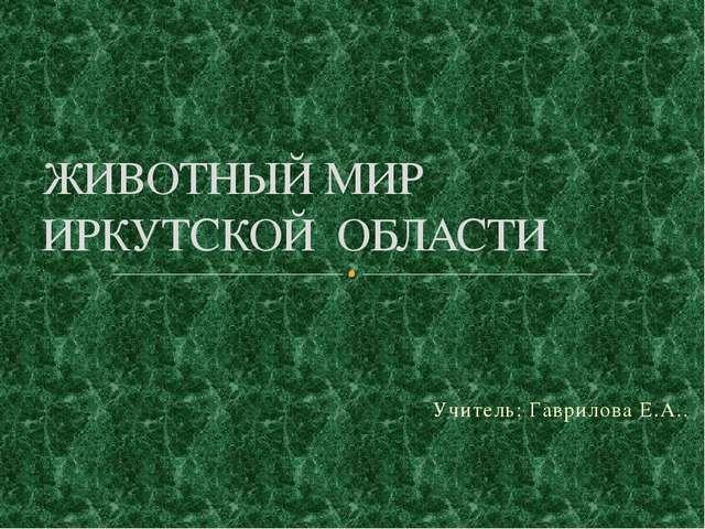 Учитель: Гаврилова Е.А.. ЖИВОТНЫЙ МИР ИРКУТСКОЙ ОБЛАСТИ