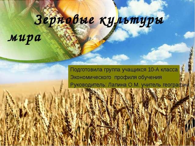 Зерновые культуры мира Подготовила группа учащихся 10-А класса Экономическог...