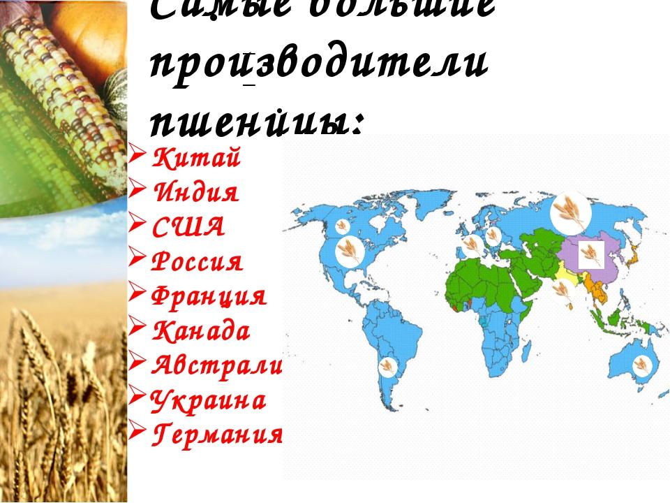 Самые большие производители пшеницы: Китай Индия США Россия Франция Канада Ав...