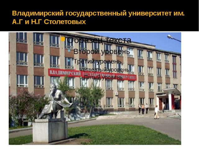 Владимирский государственный университет им. А.Г и Н.Г Столетовых