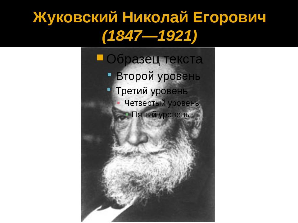 Жуковский Николай Егорович (1847—1921)