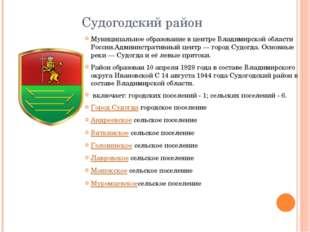 Судогодский район Муниципальное образование в центре Владимирской области Рос