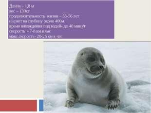 Длина – 1,8 м вес – 130кг продолжительность жизни – 55-56 лет ныряет на глуби