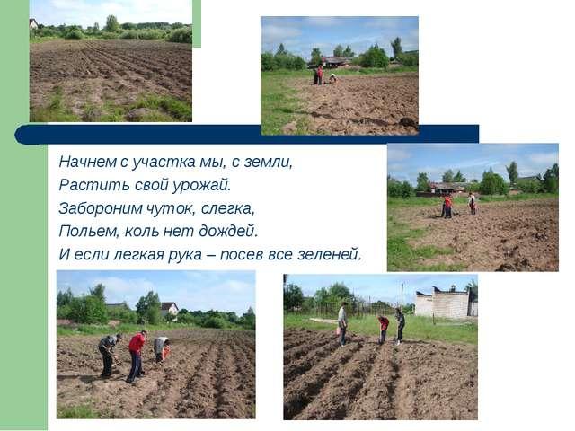 Начнем с участка мы, с земли, Растить свой урожай. Забороним чуток, слегка, П...