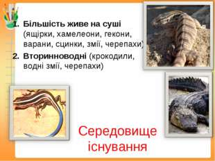 Середовище існування Більшість живе на суші (ящірки, хамелеони, гекони, варан