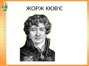 ЖОРЖ КЮВ'Є