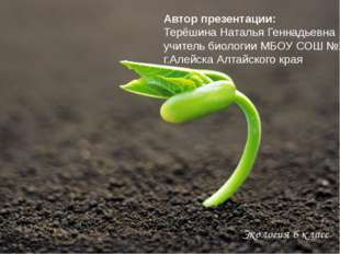 Экология 6 класс Автор презентации: Терёшина Наталья Геннадьевна учитель био